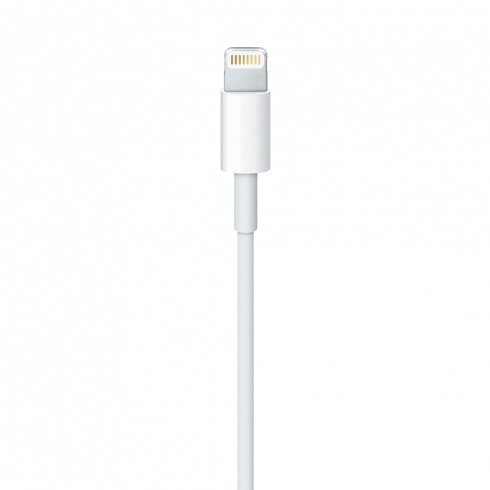 Apple Lightning — USB 1 м фото 2